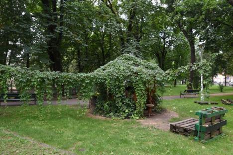 Chioşcul a dispărut, florile rămân: O parte din Parcul Libertăţii va fi întreţinută de Fundaţia Comunitară Oradea (FOTO)