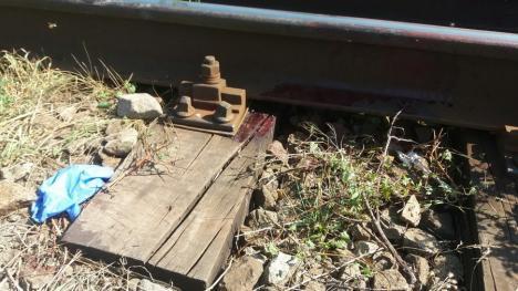 Şocant! Un adolescent de 16 ani din Oradea s-a sinucis, punându-şi capul pe linia de tren (FOTO)