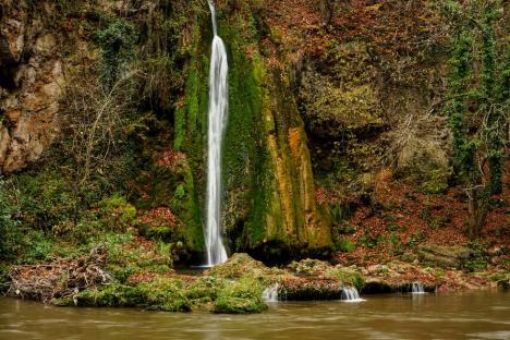 Spectacolul primăverii: O listă de frumuseţi naturale din Bihor ce merită văzute chiar şi în pandemie (FOTO)