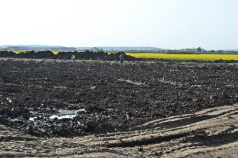 BIHOREANUL pe şantierul autostrăzii: Construirea celor 5,35 kilometri dintre Borş şi Biharia a început cu excavaţii pentru viitoarea fundaţie (FOTO)