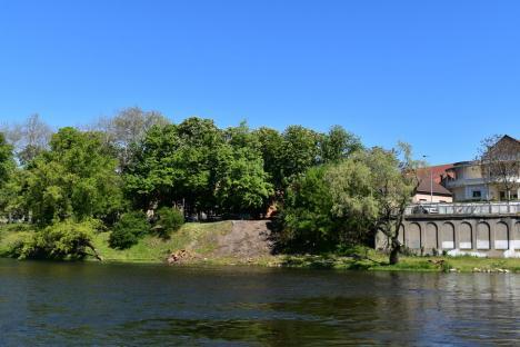 Primăria Oradea a tăiat copacii din lunca râului, ABA Crişuri face un drum tehnologic. Vezi cum arată zona (FOTO)