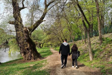 Natură urbană: Oradea ar putea avea, de-a lungul Crişului, o arie protejată