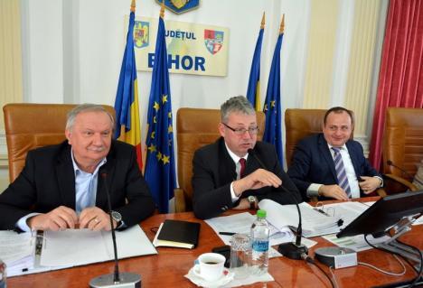Şefii Consiliului Judeţean au pierdut procesul prin care încearcă să-i 'ruşineze' pe PNL-işti că le blochează proiectele