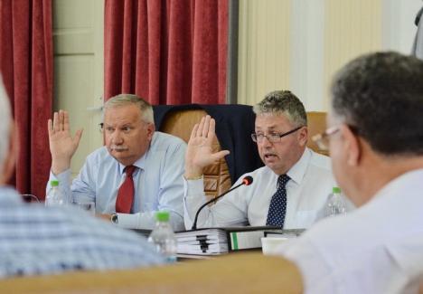 Care pe care: Liberalii de la CJ au 'trântit' un proiect pe fonduri europene, ca urmare Pásztor nu i-a mai dat un teren lui Bolojan