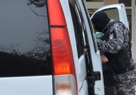 Percheziţii DIICOT la mafia lemnului, inclusiv în Bihor! Paguba se ridică la 25 milioane de euro