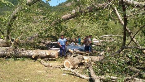Bărbatul mort în urma furtunii din Bulz era un orădean de 37 de ani. Maşina în care s-a adăpostit, complet distrusă (FOTO)