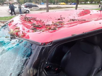 O mașină a fost strivită de un copac lângă Colegiul Economic Partenie Cosma (FOTO)