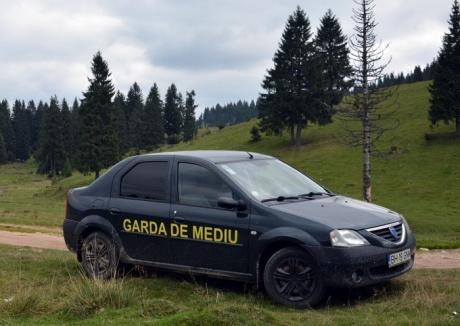 Bilanţul Gărzii de Mediu Bihor pentru 2017: Comisarii au dat 130 de amenzi, în valoare totală de aproape 2 milioane lei