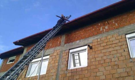 A treia zi după furtună, pompierii din Beiuş şi Ştei încă intervin pentru degajarea copacilor doborâţi de vânt (FOTO)