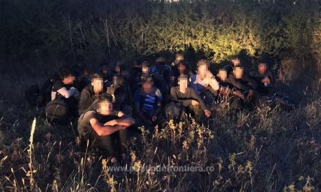 Captură de migranți: 27 de afgani, prinși de polițiștii din Salonta când încercau să treacă granița