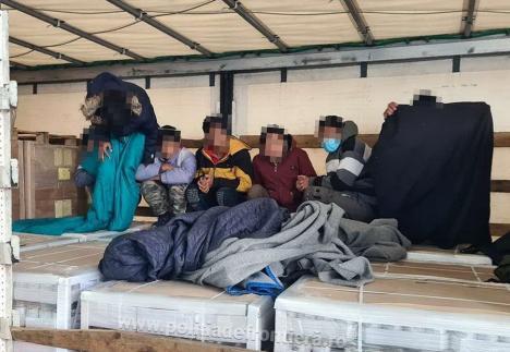 13 migranți din Afganistan și Irak, prinși la Borș încercând să treacă ilegal granița (VIDEO)