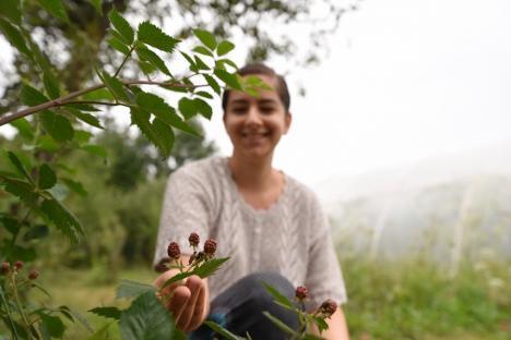 Legume... la modă: Un profesor universitar din Oradea a amenajat o grădină cu roşii ecologice şi alte soiuri exotice(FOTO / VIDEO)