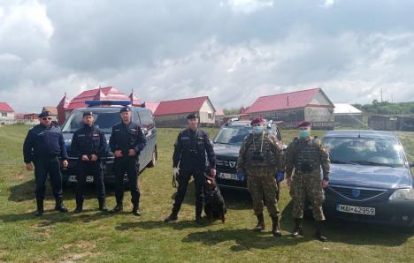 Sub paza Armatei: Prefectul de Bihor a cerut ajutorul militarilor pentru a ţine sub control colonia de romi din Vadu Crișului, aflată în carantină