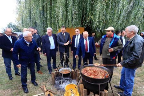 Petre Daea în Bihor: Stimulat de 'Bătutul nucilor', ministrul Agriculturii anunţă introducerea porcilor-santinelă (FOTO)