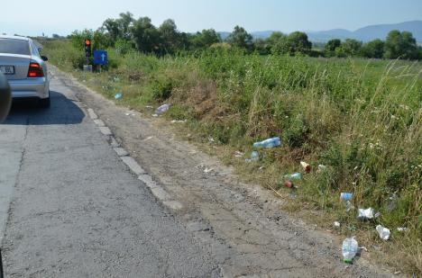 Premieră în Bihor: În Luna Curățeniei, Consiliul Județean și Ecolect premiază comunitățile locale pentru colectarea selectivă a deșeurilor