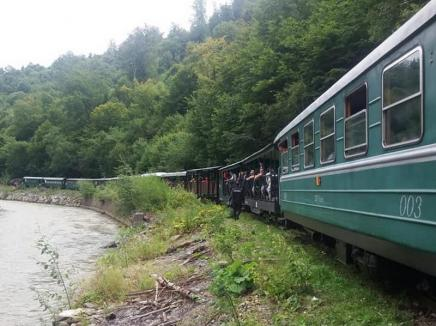 A deraiat Mocăniţa cu 200 de persoane la bord (FOTO)