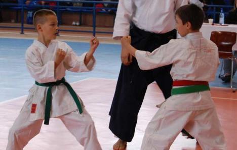 Cupa Preuniversitaria la karate tradiţional