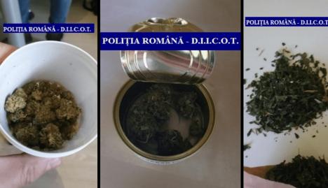 Poliţiştii antidrog au descins la magazinul cu produse din canabis medicinal din Oradea. Ce suspectează anchetatorii