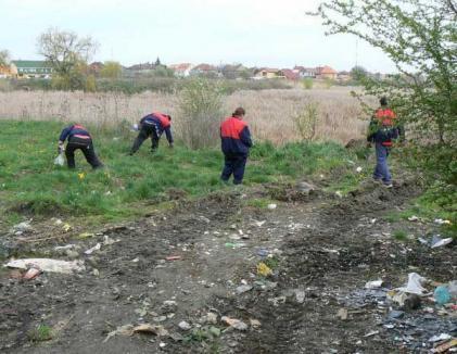 Despre munca în folosul comunităţii II