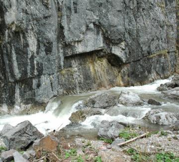 Salvaţi de jandarmi, după ce s-au rătăcit la Valea Drăganului