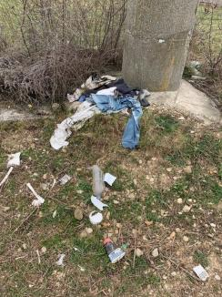Ne enervează: Orădenii de pe strada Apateului se plâng că-i invadează gunoaiele (FOTO)