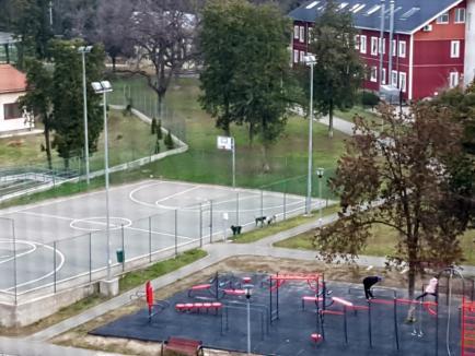 Ne enervează: În Parcul Liniştii din Oradea, copiii joacă baschet în 'rahat' de câini (FOTO)