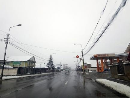 A venit zăpada! Utilajele RER Vest au ieşit pe străzile Oradiei (FOTO)