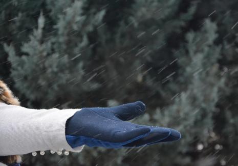 Meteorologii avertizează: Vreme rece, cu ninsori la munte și depuneri de polei