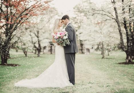 Vânătoarea de… nunţi! Fiscul le trimite notificări tinerilor căsătoriţi, ca să vadă cât au cheltuit!