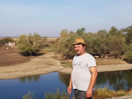 """""""Oierie"""" cu Dume: Sub ochii șefilor ABA Crişuri, sute de kilometri de diguri au devenit... păşuni pentru oi (FOTO)"""