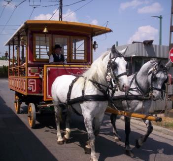 Orădeni, veniţi şi vă plimbaţi cu omnibusul!