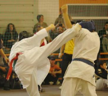 Sportivii din Ardeal se întrec în arte marţiale la Oradea