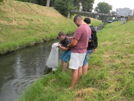 Acţiune pentru protejarea habitatului piscicol din pârâul Peţa (FOTO)