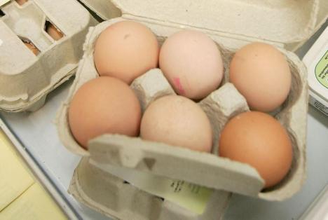 Ouă cu pesticide, descoperite în România. O tonă de gălbenuș contaminat, distrus de inspectorii sanitari