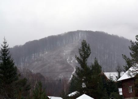 Pădurari la control: Comisarii de la Garda Forestieră i-au luat la verificări pe pădurarii din Bihor