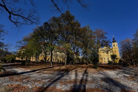 Parc înviorat: Parcul din jurul Palatului Baroc al Oradiei îşi schimbă complet înfăţişarea. Vezi ce ni se pregăteşte! (FOTO)