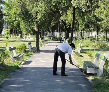 Ultimele zone verzi ale Oradiei rămase fără îngrijitor, scoase la licitaţie