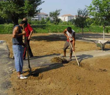 20 de zone verzi din Oradea, puse la punct