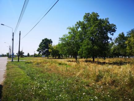 La cererea orădenilor, Cartierul Tineretului va avea 1,5 hectare de parc cu loc de joacă pentru copii și două terenuri de sport (FOTO)