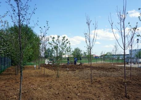 Parcul din strada Morii va fi gata luna viitoare