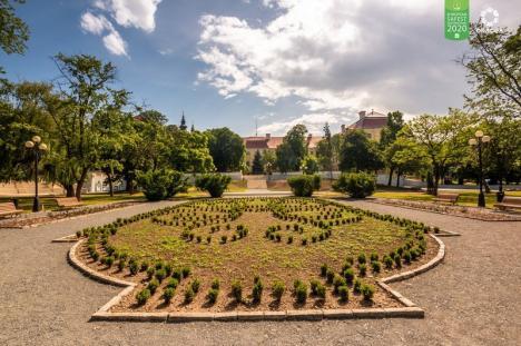 Cum ar trebui să arate un parc