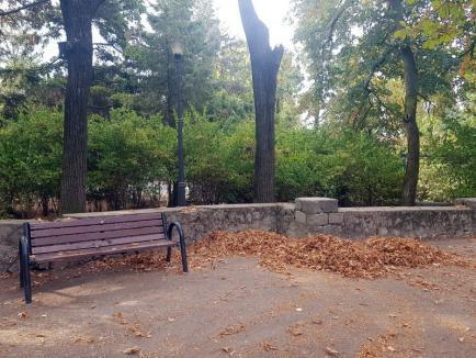Parc uitat: Parcul Petőfi din Oradea este părăginit şi murdar, chiar dacă Primăria a angajat o firmă care să-l întreţină (FOTO)