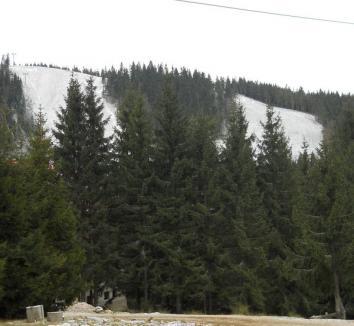 Primăria Nucet sfinţeşte pârtiile noi de la Vârtop fără Elena Udrea