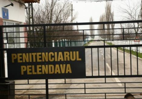 """Se întâmplă în România: Penitenciar """"călcat"""" de hoţi!"""