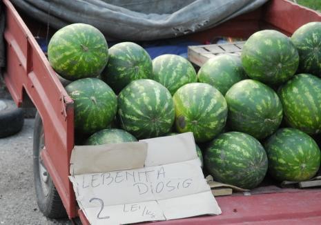 ADP Oradea, licitaţie publică cu strigare pentru locurile de vânzare a pepenilor