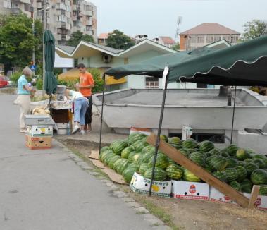 Primăria a stabilit locurile de vânzare a pepenilor
