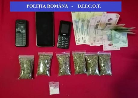 'Vânătoare' de traficanţi de droguri: 10 percheziţii la o reţea din judeţul Bihor, inclusiv la un adolescent în vârstă de 15 ani şi o femeie de 72 de ani (FOTO)