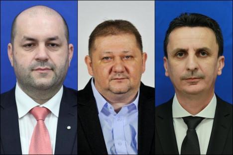 Mafia PSD din vestul ţării: DNA acuză că politicienii încasau şpăgi lunare direct la casieria partidului