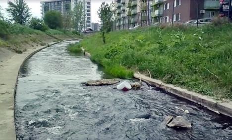Garda de Mediu: Poluarea de pe Peţa a fost provocată de o firmă de construcţii