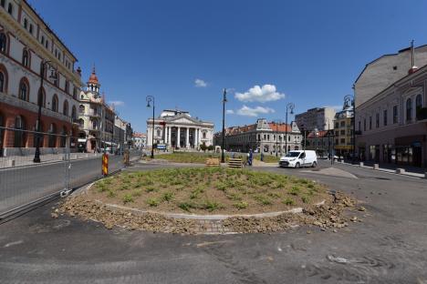Piaţa Ferdinand din Oradea înverzeşte. A început plantarea florilor şi arbuştilor (FOTO)